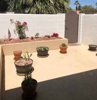 Oscar's courtyard - Oscar's Gaze